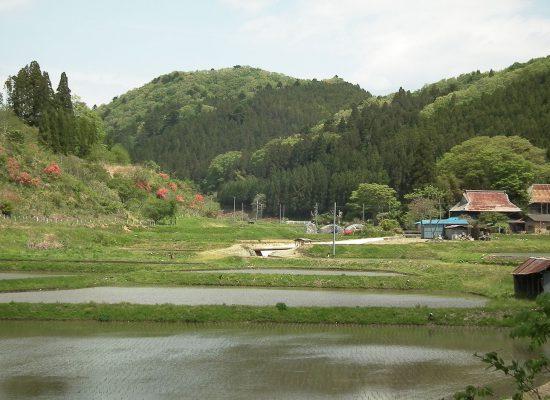 田人 春の風景